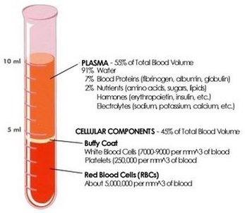 Plasma Riche en Plaquettes
